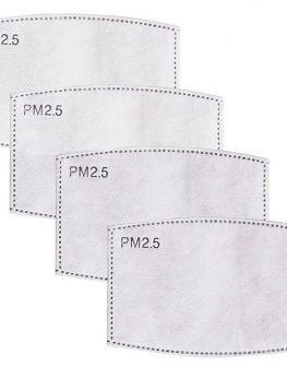PN2.5 n95 filter